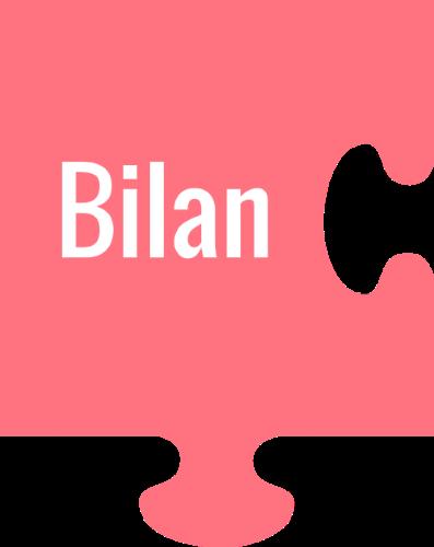 bilan.png