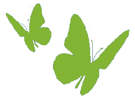 JME_papillons.png