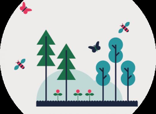 Illustration de l'objectif thématique sur l'environnement