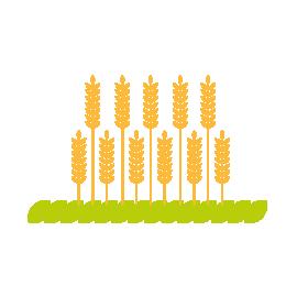 Illustration du type de territoire rural