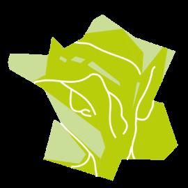 Illustration du type de territoire espaces interrégionaux