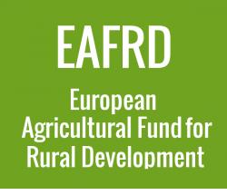 European Agricultural Fund for Rural Development illustration