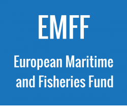 European Maritime and Fisheries Fund illustration